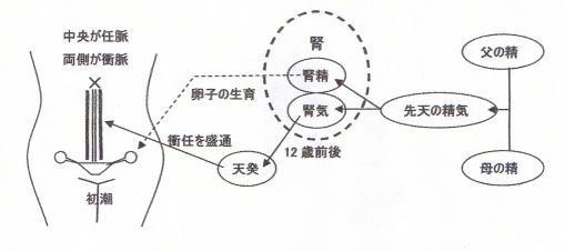 image16.joshihou